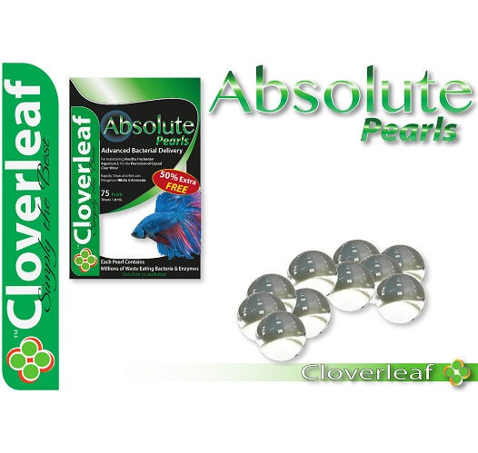 Cloverleaf Absolute Aquarium Pearls