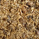 Boddingtons Premium Dried Mixed Insect Bait