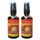 Propolis Food Supplement & Spray