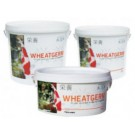 Evolution Aqua Wheatgerm Koi Food